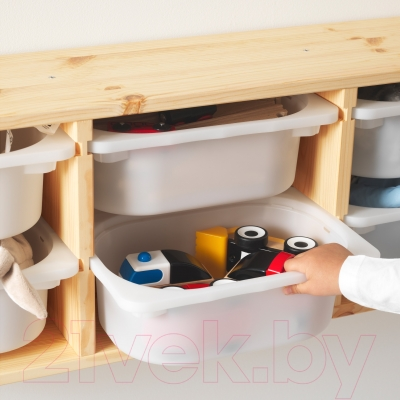 Система хранения Ikea Труфаст 098.563.00