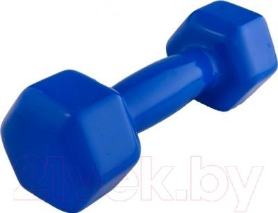Гантель NoBrand 3.5kg (синий)