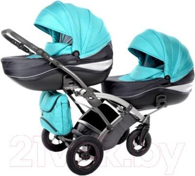 Детская универсальная коляска Tako Omega Duo (05)