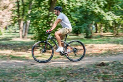 Велосипед Format 1411 29 2016 (M, серый матовый)