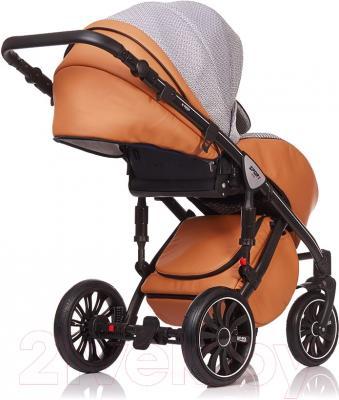 Детская универсальная коляска Anex Sport 3 в 1 (PA05) - прогулочный блок на примере модели другого цвета