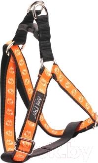 Шлея Ami Play NX6 AMI243 (оранжевая собака)
