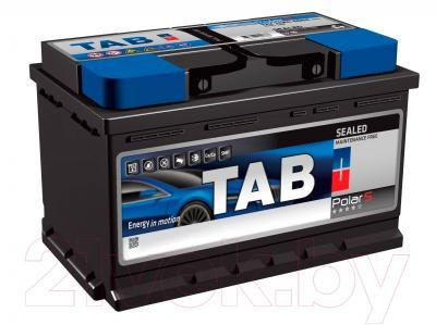 Автомобильный аккумулятор TAB Polar 246045 (45 А/ч)