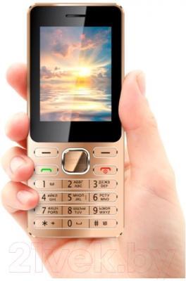 Мобильный телефон Vertex D508 (золото/металлик)