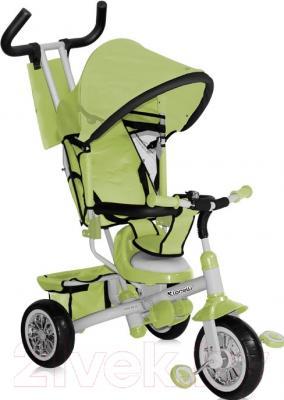 Детский велосипед с ручкой Bertoni B302A (зеленый/серый)