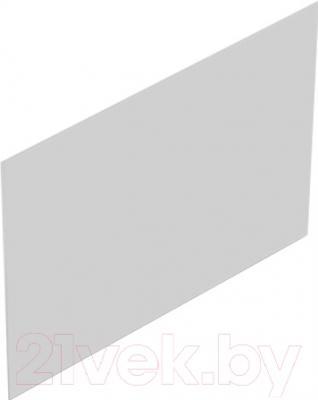 Экран для ванны Domani-Spa Clarity 150 (торцевой, пара)