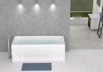 Экран для ванны Domani-Spa Clarity 150 (торцевой, пара) - ванна в комплект не входит