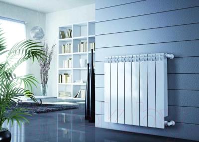 Радиатор биметаллический Rifar Base 350 (10 секций)