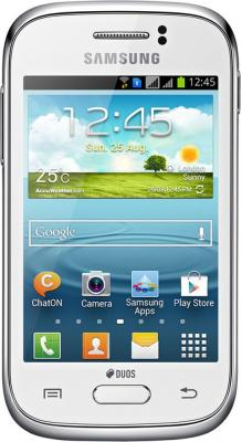 Смартфон Samsung S6312 Galaxy Young White (GT-S6312 ZWASER) - общий вид