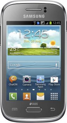 Смартфон Samsung S6312 Galaxy Young Silver (GT-S6312 MSASER) - общий вид