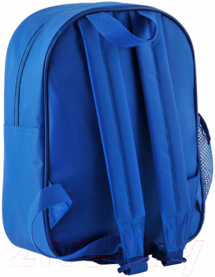 Школьный рюкзак Paso PMM-303