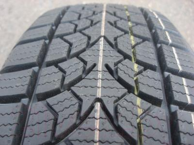 Зимняя шина Rosava WQ-103 185/70R14 88S