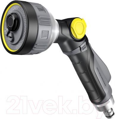 Пистолет-распылитель Karcher 2.645-271.0