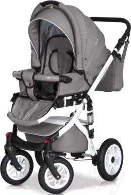 Детская универсальная коляска Riko Essence 2 в 1 (08/Aplle Green) - внешний вид на примере модели другого цвета