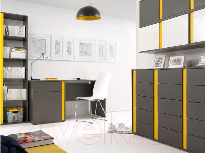 Шкаф Black Red White Graphic S202-SZFN1D (серый вольфрам)