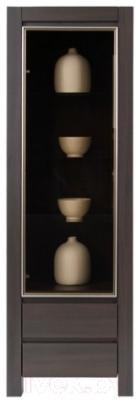 Шкаф-пенал Black Red White August S83-REG1W2SL с подсветкой (дуб венге)