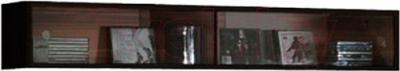 Шкаф навесной Black Red White Jang S92-SFW2W-2-12 (черный блеск)