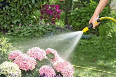 Распылитель садовый Karcher 2.645-264.0