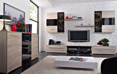 Шкаф навесной Black Red White Somatic S164-SFW1W1D/11/10 Р (дуб сонома/черный блеск)
