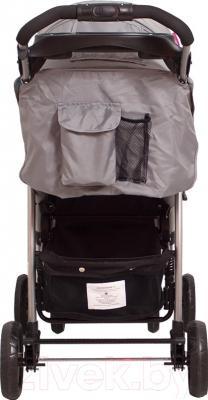 Детская прогулочная коляска Coto baby Blues 2016 (23/мятный)