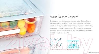 Холодильник с морозильником LG GA-M539ZEQZ