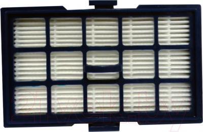 Hepa-фильтр Rolsen C2080TSF