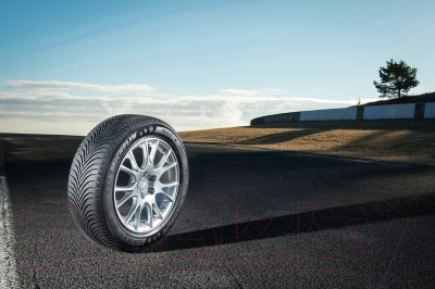 Зимняя шина Michelin Alpin 5 205/50R17 93H