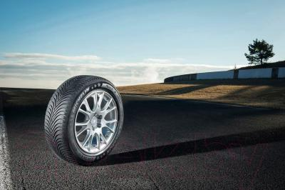 Зимняя шина Michelin Alpin 5 225/55R16 95V Run-Flat