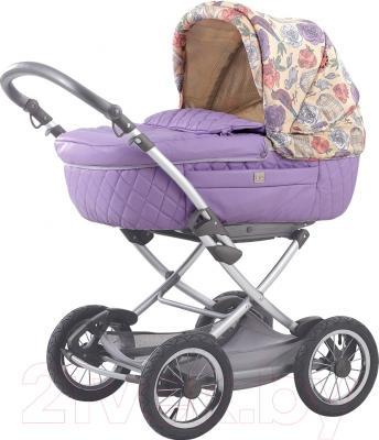 Детская универсальная коляска Happy Baby Charlotte (фиолетовый)