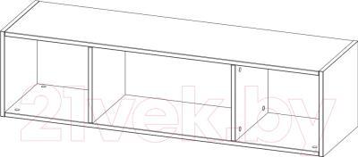 Полка 3Dom СП162 (венге) - схема