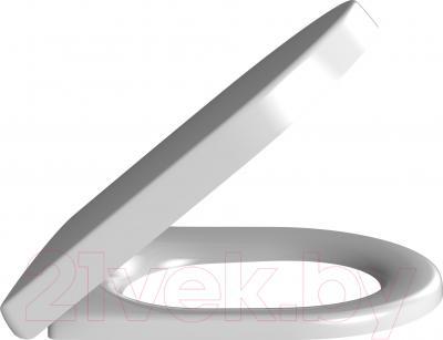 Сиденье для унитаза Villeroy & Boch Omnia Architectura 98M9 C101