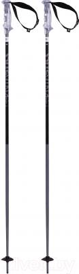Горнолыжные палки Volkl Phantastick 2 / 166606 (р.125)