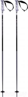 Горнолыжные палки Volkl Phantastick 2 / 166606 (р.135)