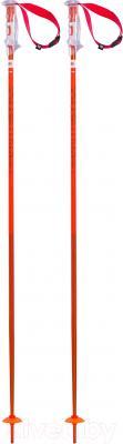Горнолыжные палки Volkl Phantastick 2 / 166610 (р.125)