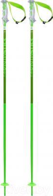 Горнолыжные палки Volkl Phantastick 2 / 166614 (р.120)