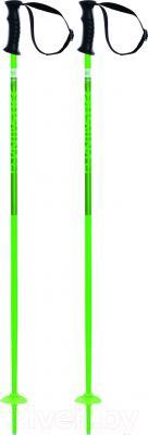 Горнолыжные палки Volkl Phantastick Kids / 166628 (р.95)