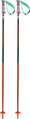 Горнолыжные палки Volkl Phantastick 2 / 167603 (р.125)