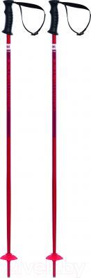 Горнолыжные палки Volkl Phantastick Kids / 167608 (р.100)