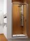 Дверь душевой кабины Radaway Premium Plus DWJ (33343-01-06N) -