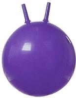 Фитбол с рожками Gold Cup JB65 (фиолетовый) -