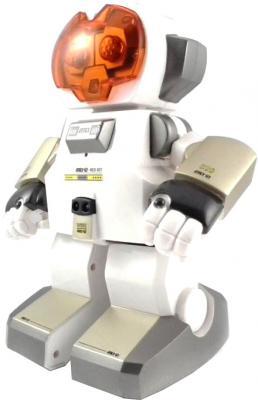 Радиоуправляемая игрушка Silverlit Echo (88308) - общий вид