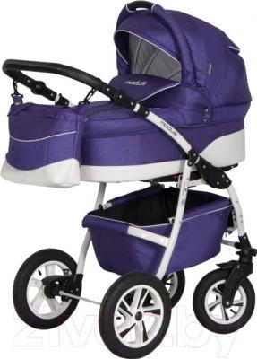 Детская универсальная коляска Riko Modus 3 в 1 (08)