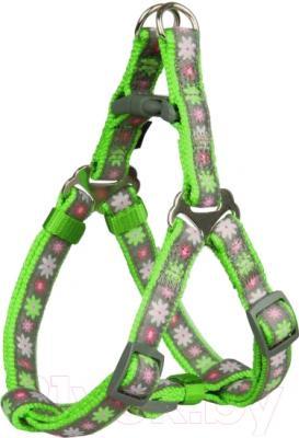 Шлея Trixie Modern Art Blooms 15630 (XXS-XS, зеленый)