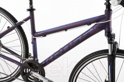 Велосипед Kross Evado 2.0 2016 (M, синий/фиолетовый матовый)