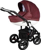 Детская универсальная коляска Genesis Lacio (DS 09) -