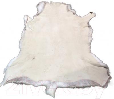 Шкура животного Pokka Standard L SQ205