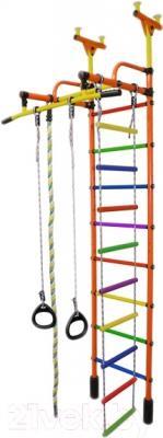 Детский спортивный комплекс Формула здоровья Жирафик-1А Плюс (оранжевый/радуга)