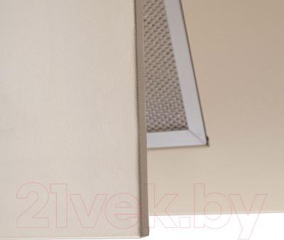 Вытяжка декоративная Pyramida KZ 60 IV