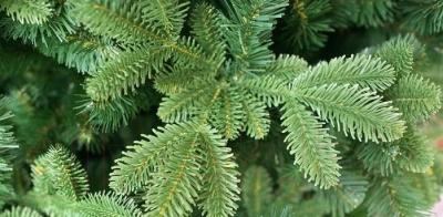 Ель искусственная Green Trees Барокко Премиум (1.2м)