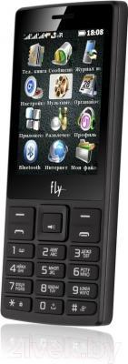 Мобильный телефон Fly TS112 (черный)